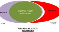 K.Skóra_koszyk_mini