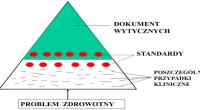 wytyczne i standardy postępowania KL 11-2009 (Kopiowanie)
